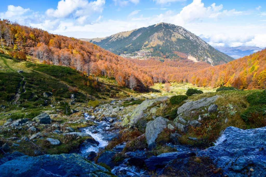 Photo of rural mountain stream and orange/red fall foliage in the Sar Mountains close to Prevalle, Kosovo.